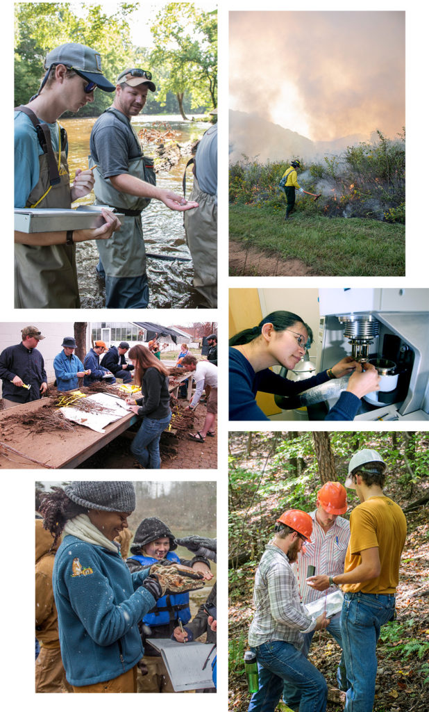 A collage of students and researchers working in the lab and in the field in various natural resources subjects.
