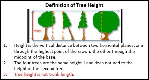 Definition of tree height guide.